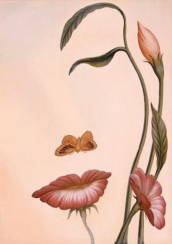 Mariposa a la flor