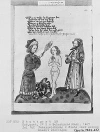 Platón azota a su criado