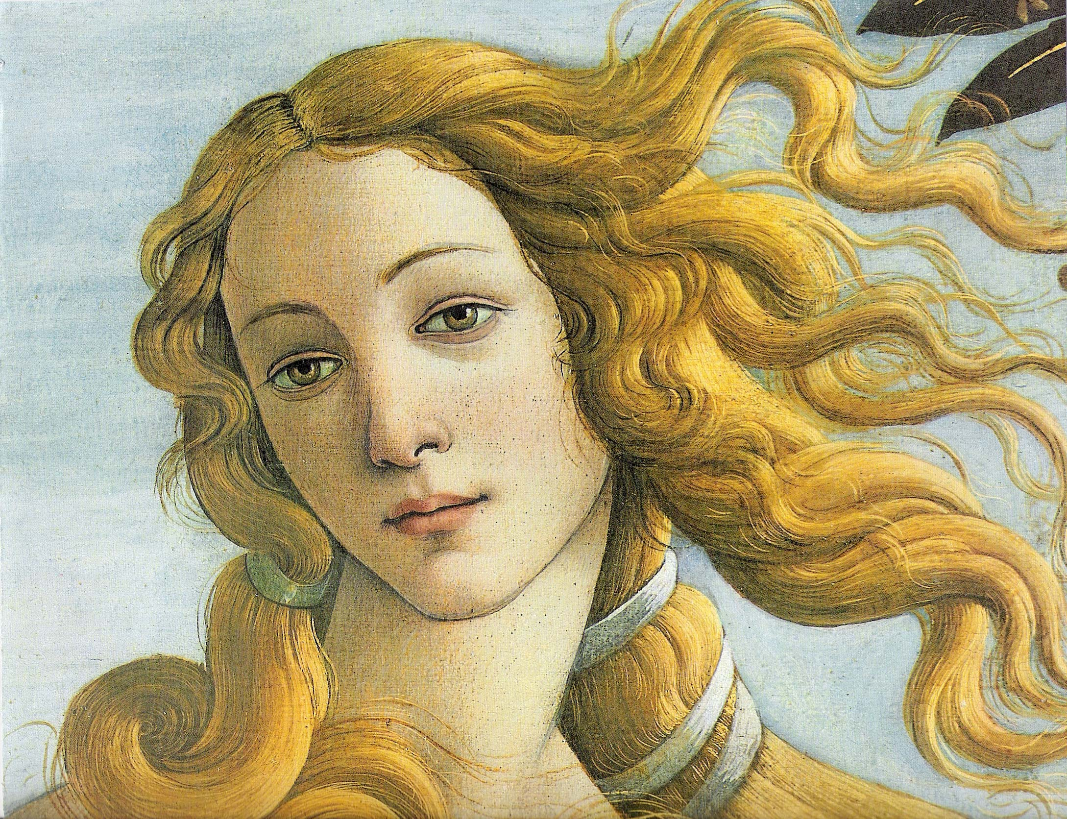 botticellis birth of venus essay Sandro botticelli's birth of venus differs in style from those of his contemporaries, as it seems to ignore the recent knowledge of anatomy and perspective.