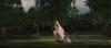 vlcsnap-2013-01-10-19h27m58s75