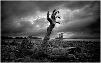 En La náusea, el protagonista se ve inútil como las raíces del árbol.