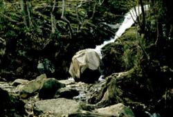 David Nash's 'Wooden Boulder'.