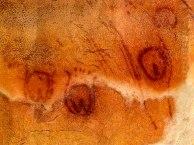"""""""Cueva de Tito Bustillo, Ribadesella, Asturias. Camarín de las Vulvas con una antigüedad de entre 20.000 y 40.000 años."""